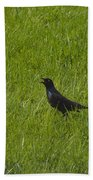 Nevermore  Beach Towel