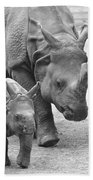 New Born Rhino And Mom Beach Towel