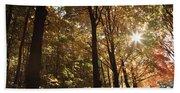 New England Autumn Forest Beach Towel