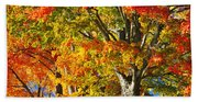 New England Sugar Maples Beach Towel