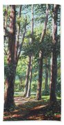 New Forest Trees With Shadows Beach Towel