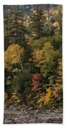 New Hampshire Color Along The Swift River Beach Towel