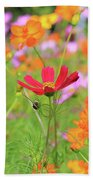 New Jersey Wildflowers Beach Towel