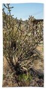 New Mexico Cholla Beach Towel