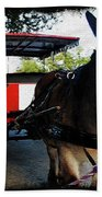 New Orleans Carriage Ride Beach Towel