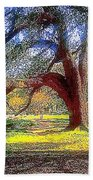 New Orleans Sunday In The Park With George Beach Towel