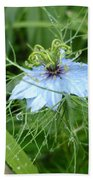 Nigella In Spring Rain Beach Towel