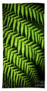 Night Forest Frond Beach Towel