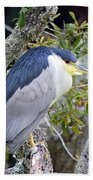 Night Heron Beach Towel