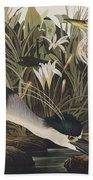 Night Heron Or Qua Bird Beach Towel
