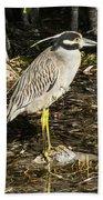 Night Heron Standing On A Rock In Key West Beach Towel