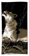 Night Lioness Beach Towel