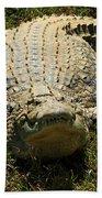 Nile Crocodile - Africa Beach Towel
