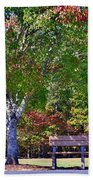 Ninety Six National Historic Site Bench In Autumn  Beach Towel