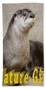 North American Otter Nature Girl Beach Towel
