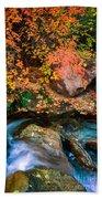 North Creek Fall Foliage Beach Towel
