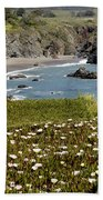 Northern California Coast Scene Beach Towel