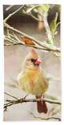 Northern Cardinal Female - Digital Painting Beach Towel