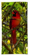 Northern Cardinal Work Number Two Beach Towel