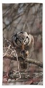 Northern Hawk Owl Having Lunch 9416 Beach Towel