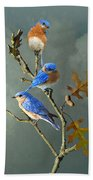 Nothing But Bluebirds Beach Towel