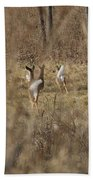 Nothing But White Tails Beach Towel