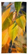 November Colors Beach Towel