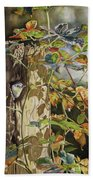 Nuthatch And Creeper Beach Towel