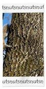 Nutsnutsnuts Beach Towel