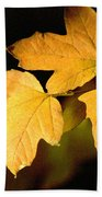 Oak Leaf Trio Beach Towel