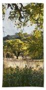 Oak Meadow Beach Towel