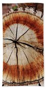 Oak Stump Beach Towel