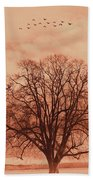 Oak Tree Alone  Beach Towel
