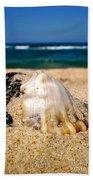 Ocean Beyond A Shell Beach Towel