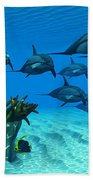 Ocean Striped Dolphins Beach Towel