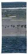 Ocean Way Beach Sheet