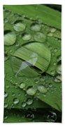 Drops Of Rain Beach Towel