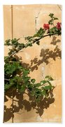 Of Light And Shadow - Bougainvillea On A Timeworn Plaster Wall Beach Towel