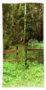 Off The Beaten Path Haida Gwaii Bc Beach Towel