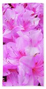 Office Art Azalea Flowers Botanical 31 Azaleas Giclee Art Prints Baslee Troutman Beach Towel