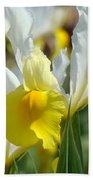 Office Art Botanical Iris Flower Garden Giclee Prints Baslee Troutman Beach Towel