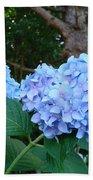 Office Art Hydrangea Flowers Blue Giclee Prints Floral Baslee Troutman Beach Towel