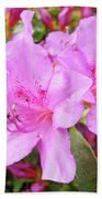 Office Art Pink Azalea Flower Garden 3 Giclee Art Prints Baslee Troutman Beach Towel