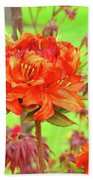 Office Art Prints Orange Azalea Flowers Landscape 13 Giclee Prints Baslee Troutman Beach Towel