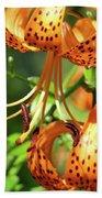 Office Art Prints Tiger Lilies Flowers Giclee Baslee Troutman Beach Towel
