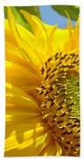 Office Art Sunflowers Giclee Art Prints Sun Flowers Baslee Troutman Beach Towel