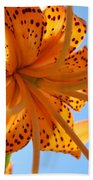 Office Artwork Tiger Lily Flowers Art Prints Baslee Troutman Beach Towel