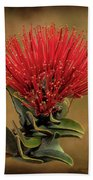 Ohia Lehua Flower Volcanos National Park Beach Towel