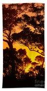 Ohia Trees At Sunset Beach Towel