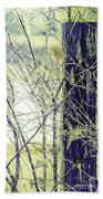 Old Fence Post Beach Towel